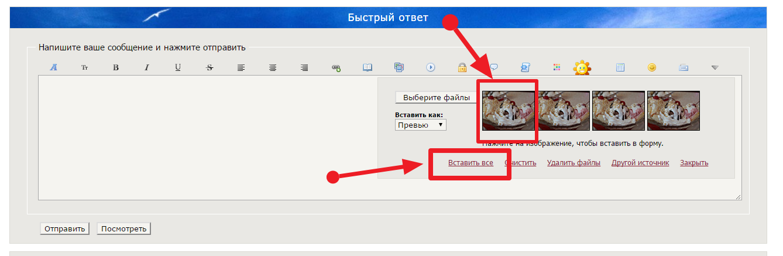 http://se.uploads.ru/0Gc41.png