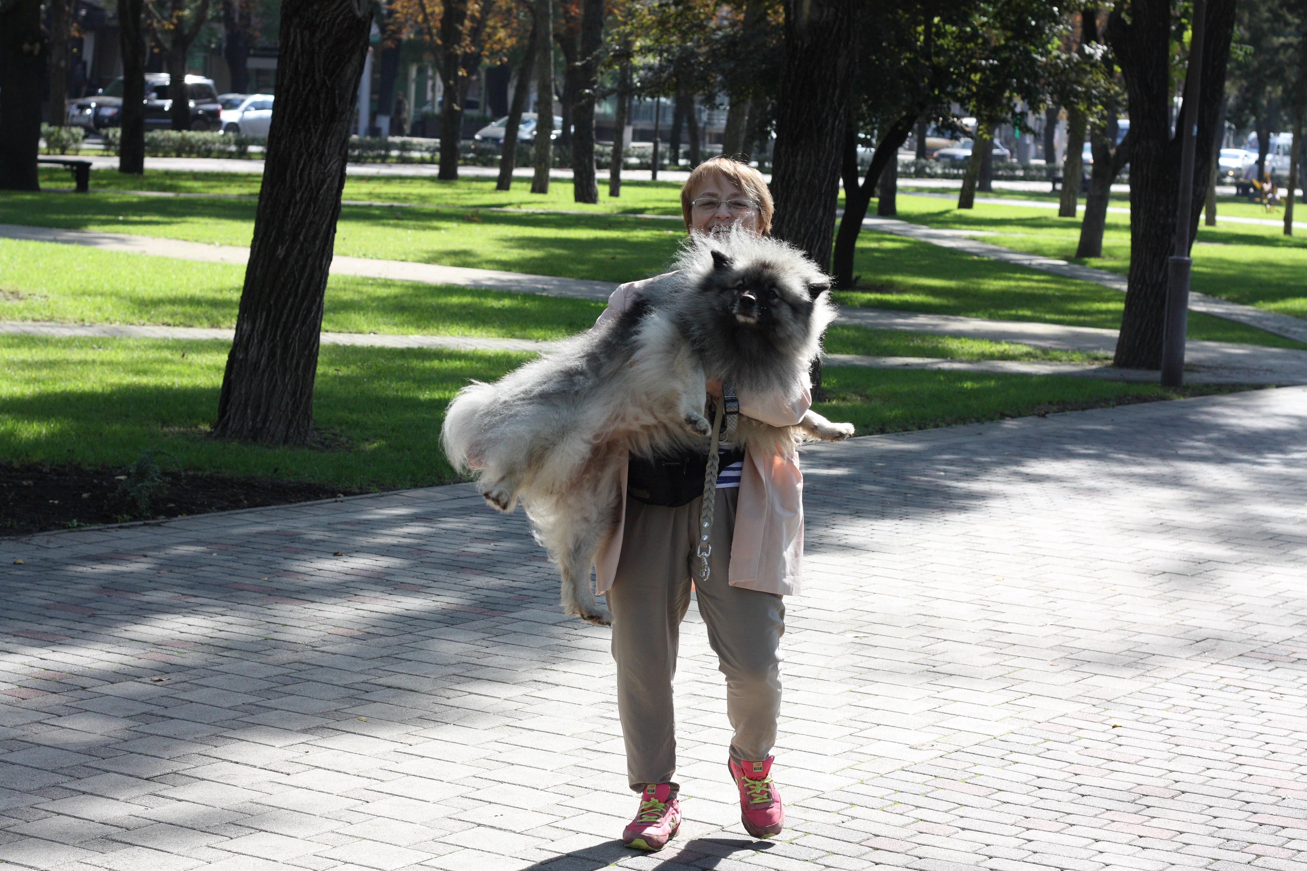 http://se.uploads.ru/2fhzk.jpg