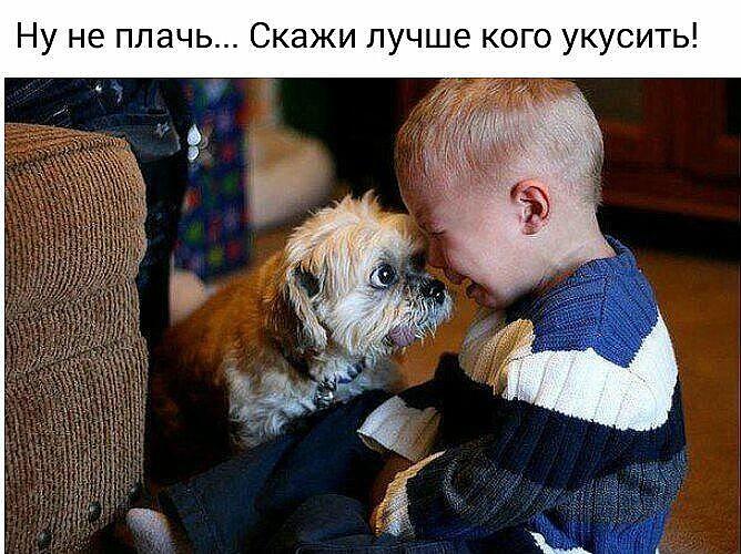 http://se.uploads.ru/3ZeuA.jpg