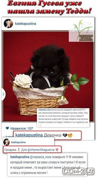 http://se.uploads.ru/68zCB.jpg