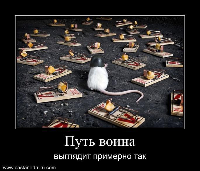 http://se.uploads.ru/7z9PK.jpg