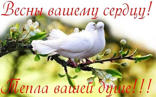 http://se.uploads.ru/8grlZ.jpg