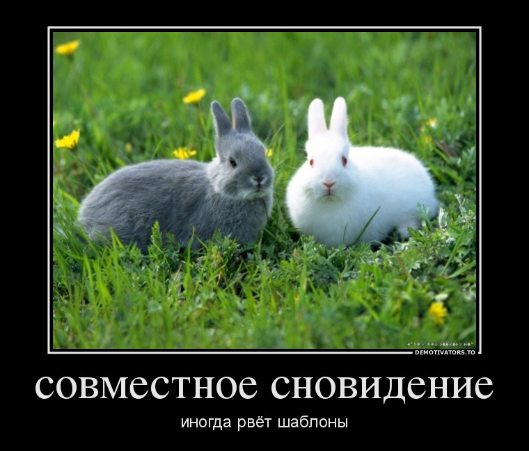 http://se.uploads.ru/95fEW.jpg