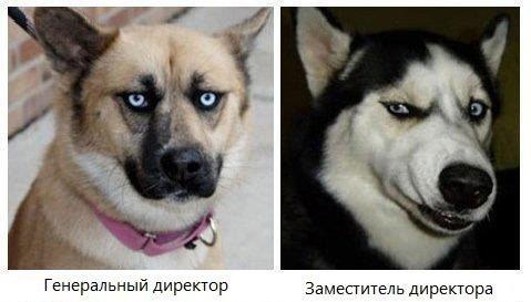 http://se.uploads.ru/A6gNZ.jpg