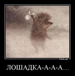 http://se.uploads.ru/Am84x.jpg