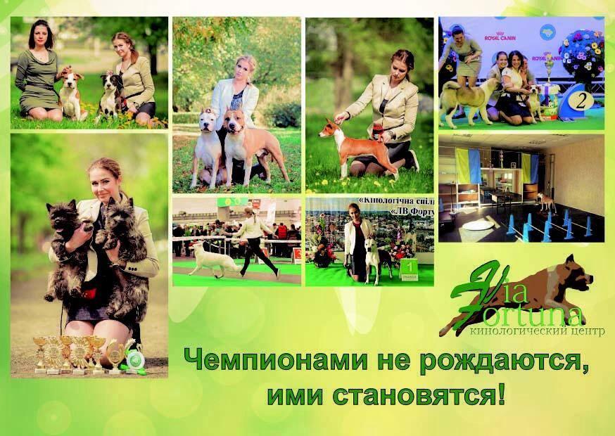 http://se.uploads.ru/BynjE.jpg