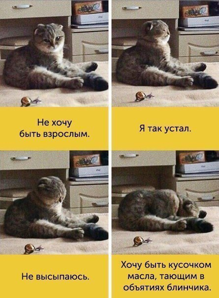 http://se.uploads.ru/Bz7sJ.jpg
