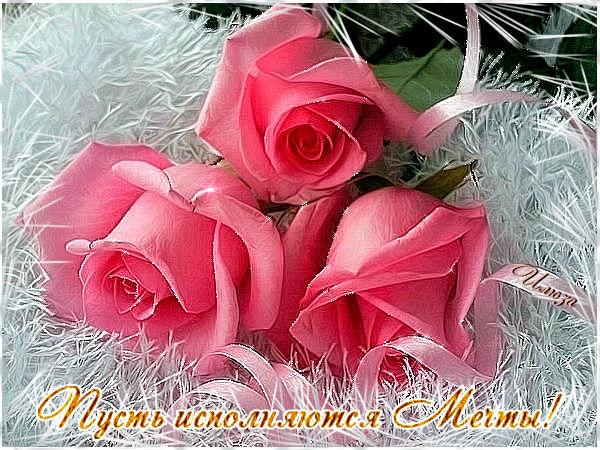 http://se.uploads.ru/D6Ney.jpg