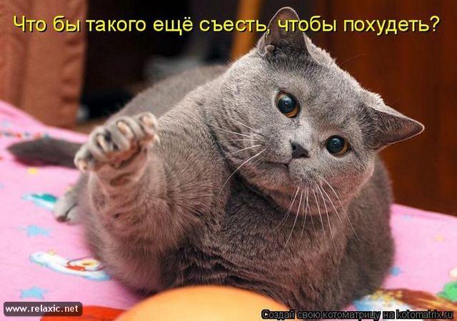 http://se.uploads.ru/DqmNw.jpg
