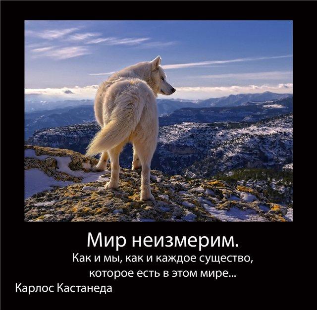 http://se.uploads.ru/ESJIf.jpg