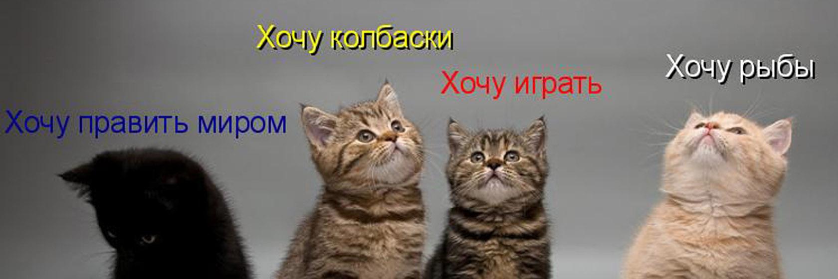 http://se.uploads.ru/FaNs4.jpg
