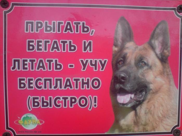 http://se.uploads.ru/IQqvZ.jpg