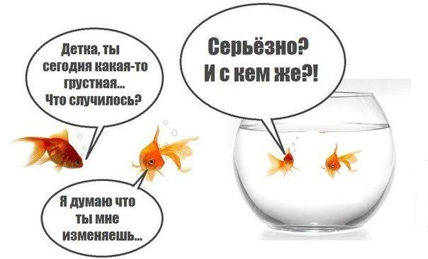 http://se.uploads.ru/ITJFC.jpg