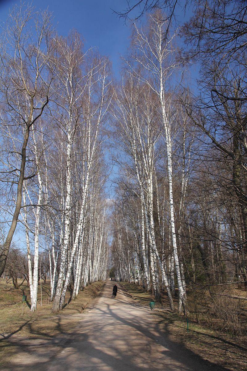 http://se.uploads.ru/IrTZk.jpg