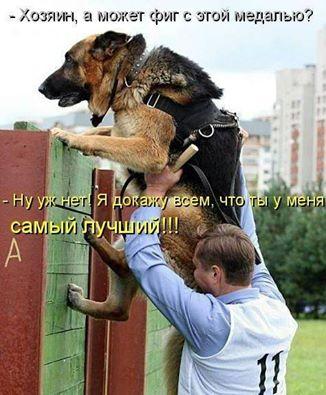 http://se.uploads.ru/Myjul.jpg