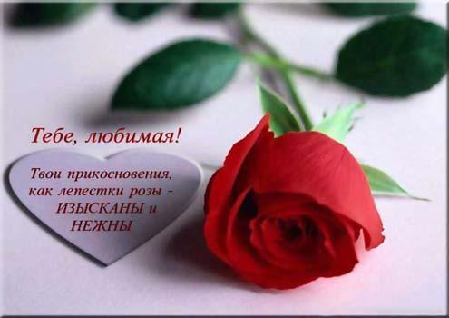 http://se.uploads.ru/Omohl.jpg