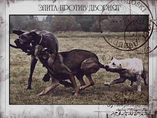 http://se.uploads.ru/QE5DX.jpg