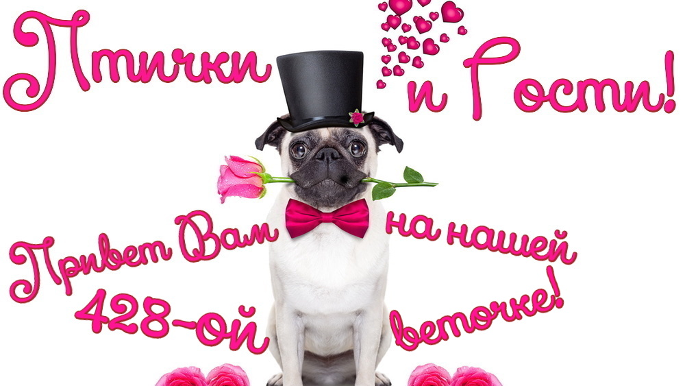 http://se.uploads.ru/Rk5Jr.jpg