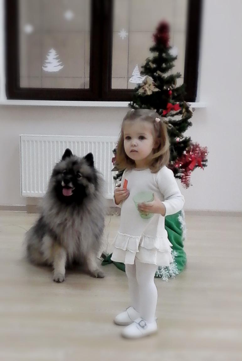 http://se.uploads.ru/RpGWB.jpg