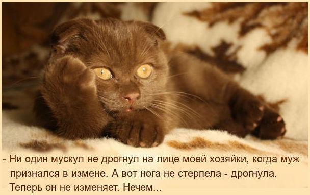 http://se.uploads.ru/Tju9Z.jpg