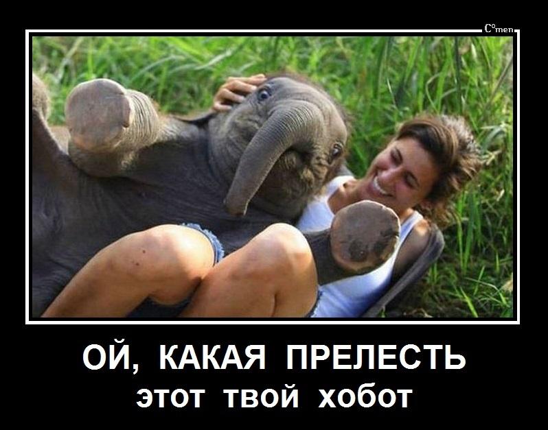 http://se.uploads.ru/TxDmP.jpg