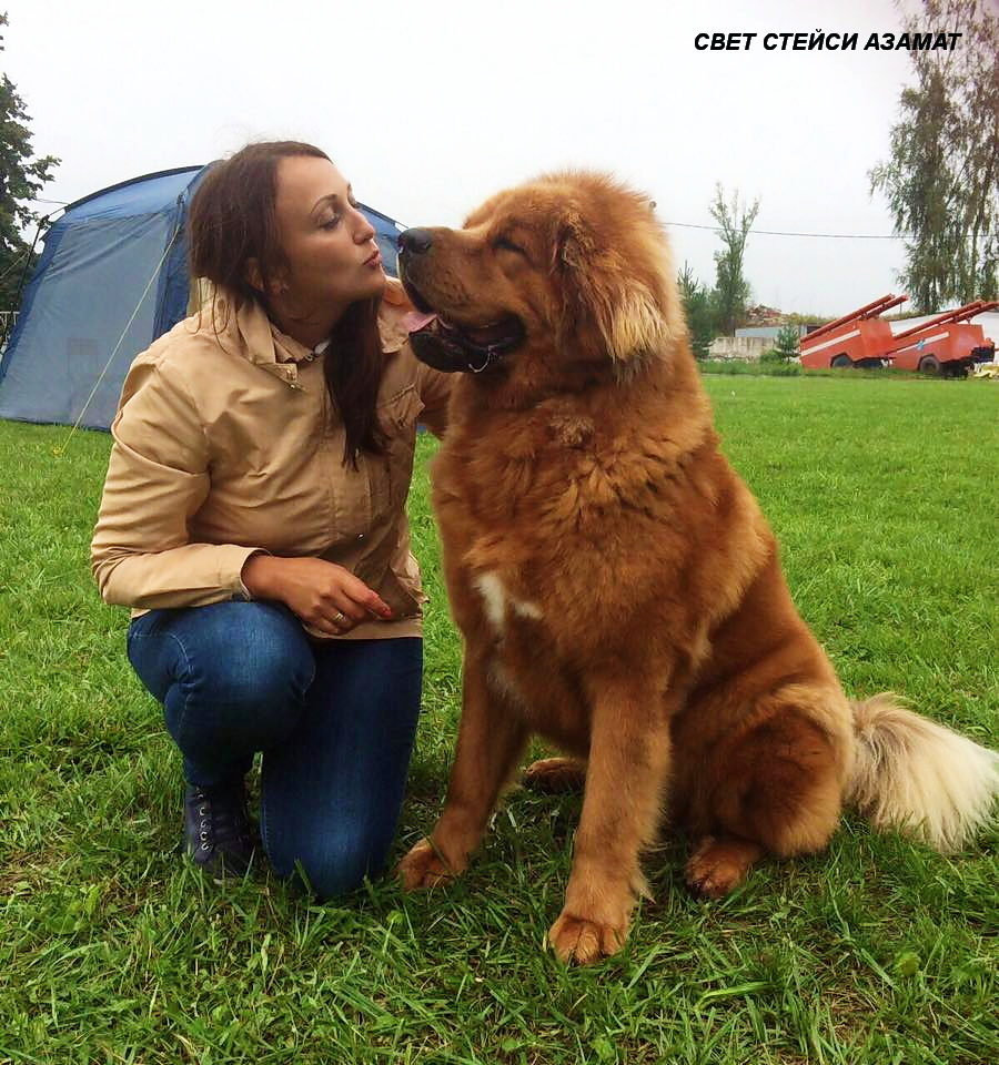 http://se.uploads.ru/U4bAW.jpg