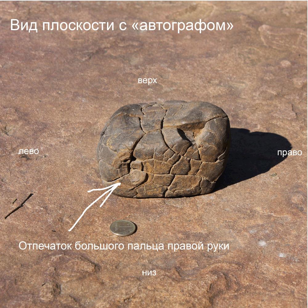 http://se.uploads.ru/UTLx7.jpg