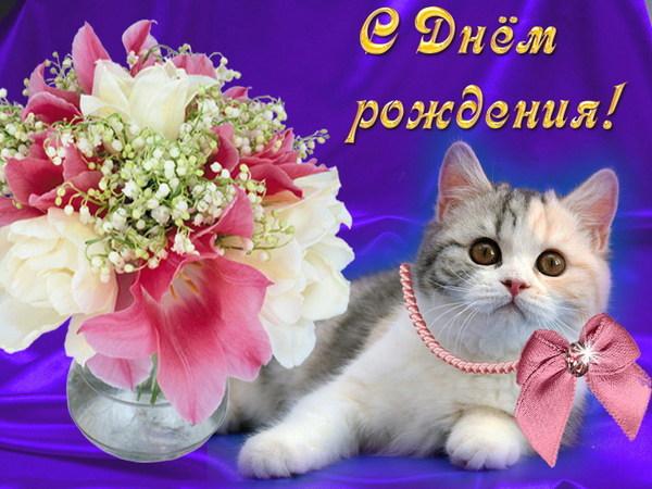 http://se.uploads.ru/Y8Ow6.jpg