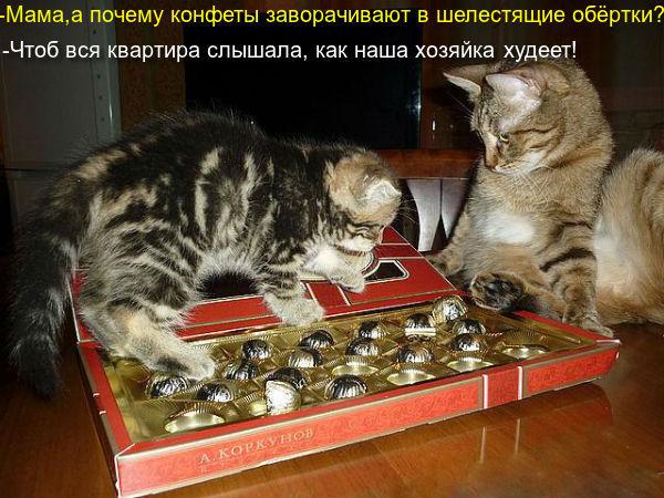 http://se.uploads.ru/ZEmpv.jpg