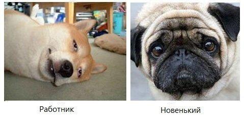 http://se.uploads.ru/aADQc.jpg