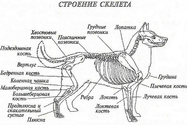 http://se.uploads.ru/aVsHX.jpg
