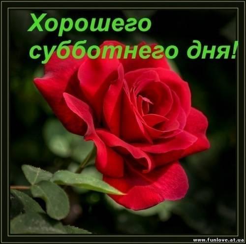 http://se.uploads.ru/btkqa.jpg