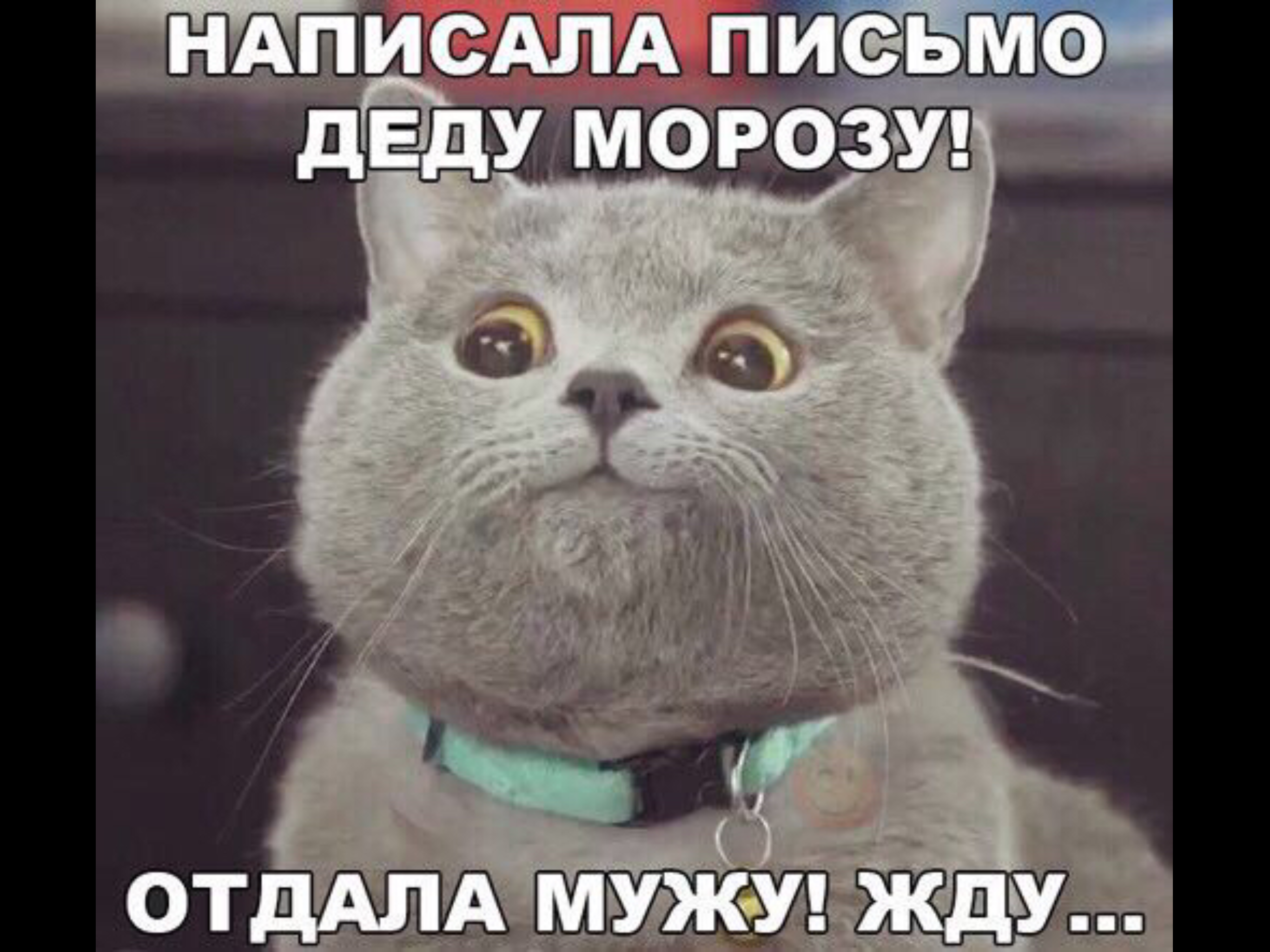 http://se.uploads.ru/cprtK.png