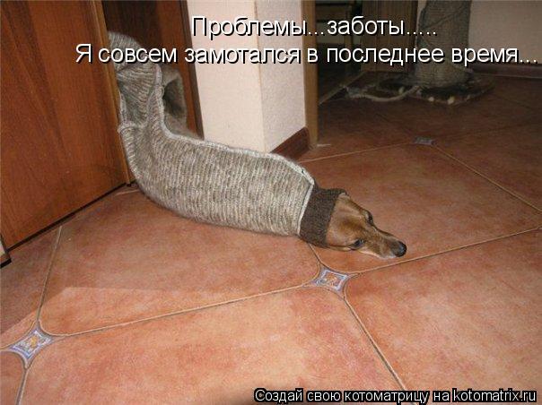 http://se.uploads.ru/fm9MY.jpg