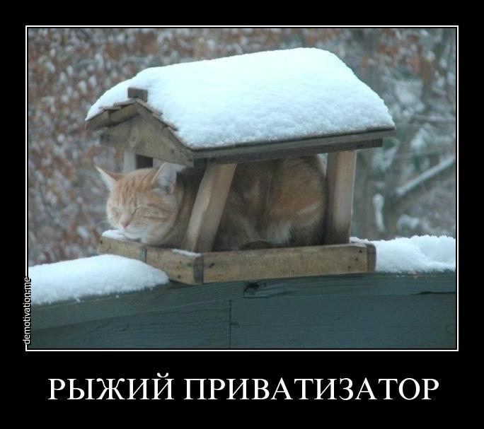 http://se.uploads.ru/gX6iO.jpg