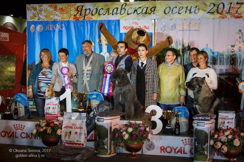 http://se.uploads.ru/h0OWb.jpg