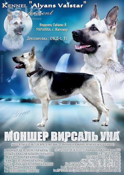 http://se.uploads.ru/hqMR1.jpg