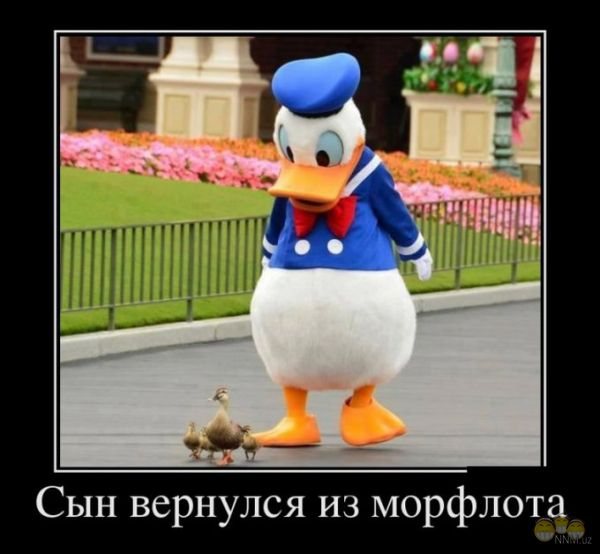 http://se.uploads.ru/iz2j5.jpg