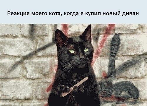 http://se.uploads.ru/j5D7s.jpg
