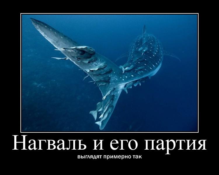 http://se.uploads.ru/jQ7Lk.jpg