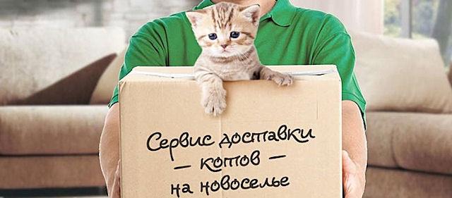http://se.uploads.ru/oBHE8.jpg