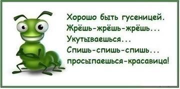 http://se.uploads.ru/t/08Sxk.jpg