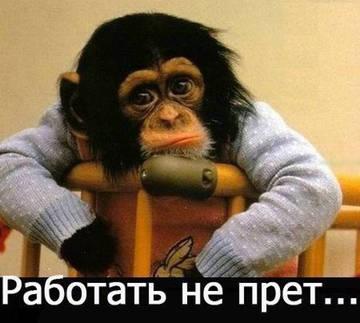 http://se.uploads.ru/t/12EmT.jpg