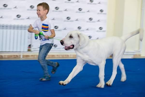 http://se.uploads.ru/t/1rIq9.jpg