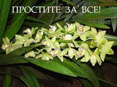 http://se.uploads.ru/t/1zSVL.jpg