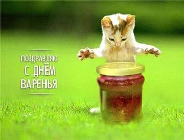 http://se.uploads.ru/t/2Esnq.jpg