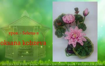 http://se.uploads.ru/t/2P0NU.jpg