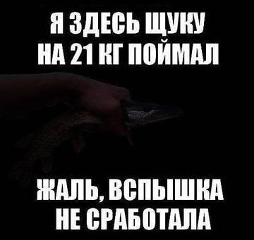 http://se.uploads.ru/t/35gGl.jpg