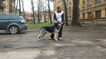 http://se.uploads.ru/t/3OhI1.jpg