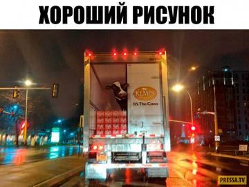 http://se.uploads.ru/t/3Yby8.jpg